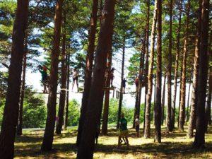Actividades extraescolares. Circuitos de pino a pino